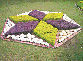 One can decorate outside-the-house garden by the use of ground-cover