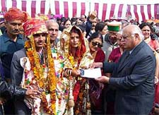 himachal pradesh girl for marriage