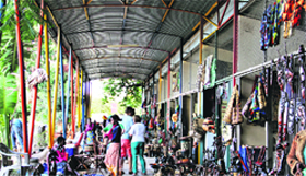 The curio market near Mukuni park