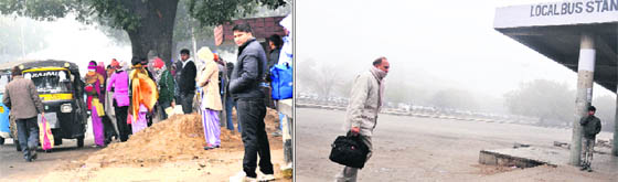 Chandigarh Sector 17 Bus Stand Sector 17 Local Bus Stand