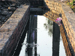 The Tribune, Chandigarh, India - Haryana