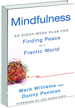 mindfulness fonding peace in a frantic world pdf